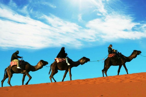 11 days tour to the desert and imperial cities