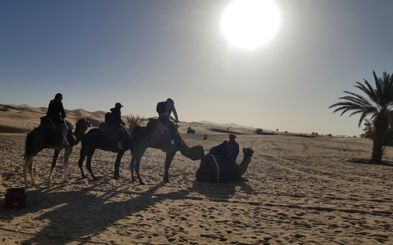 merzouga desert in 3 days